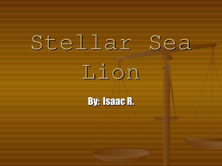 Stellar Sea Lion By:   Isaac R.