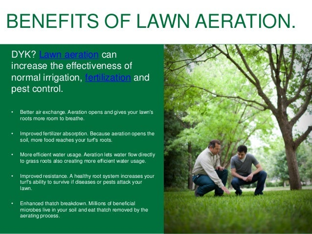 Lawn Aeration Amp Lawn Fertilizing Tips For Homeowners