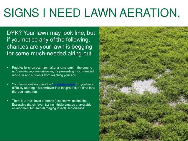 When Should You Fertilize Your Yard Alluring Fertilizing Your Lawn Spillo  Caves Design Inspiration