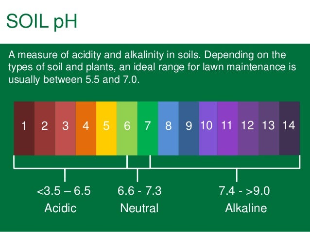 Image gallery soil levels for Importance of soil wikipedia