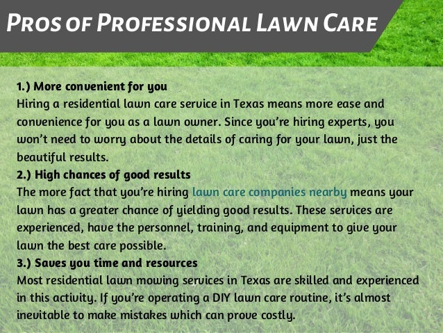 Pros & Cons of DIY Lawn Care Vs  Professional Lawn Care in Texas
