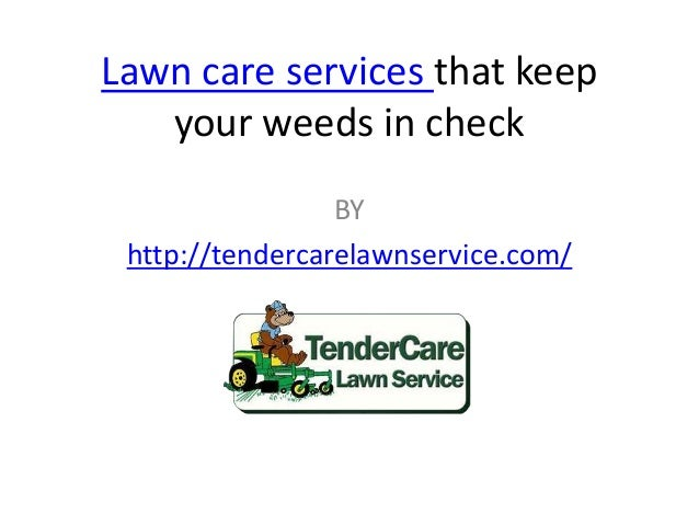 Lawn care services that keep your weeds in check BY http://tendercarelawnservice.com/