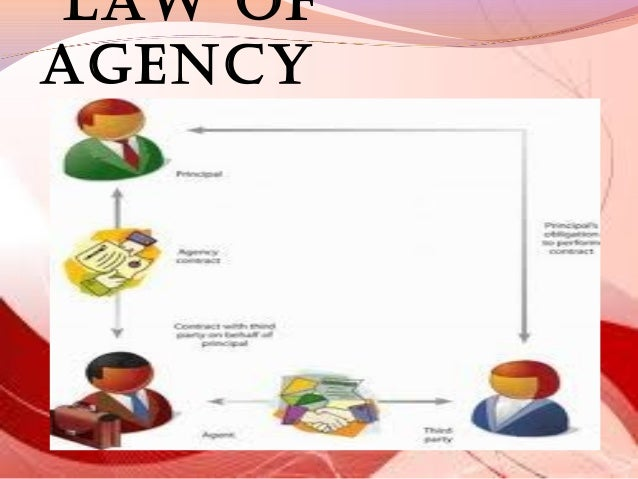 Law of Agency Examples