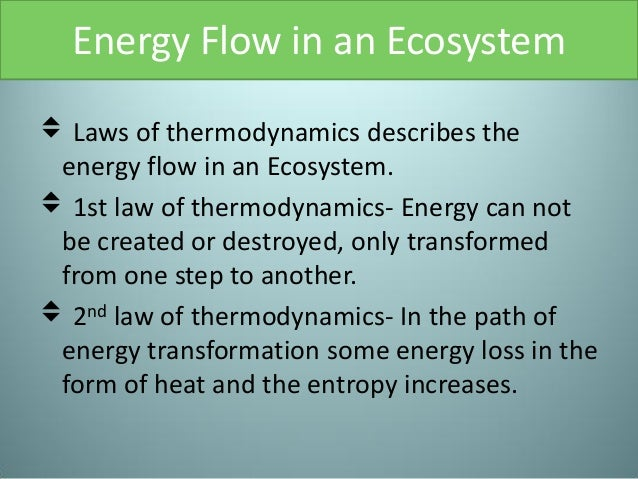 1st and 2nd law of thermodynamics pdf
