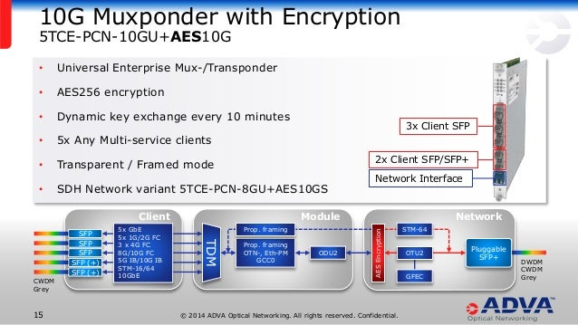 Layer 1 Encryption in WDM Transport Systems
