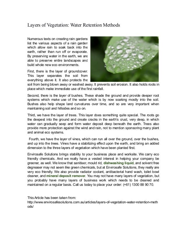 Layers of Vegetation: Water Retention Methods Numerous texts on creating rain gardens list the various aspects of a rain g...