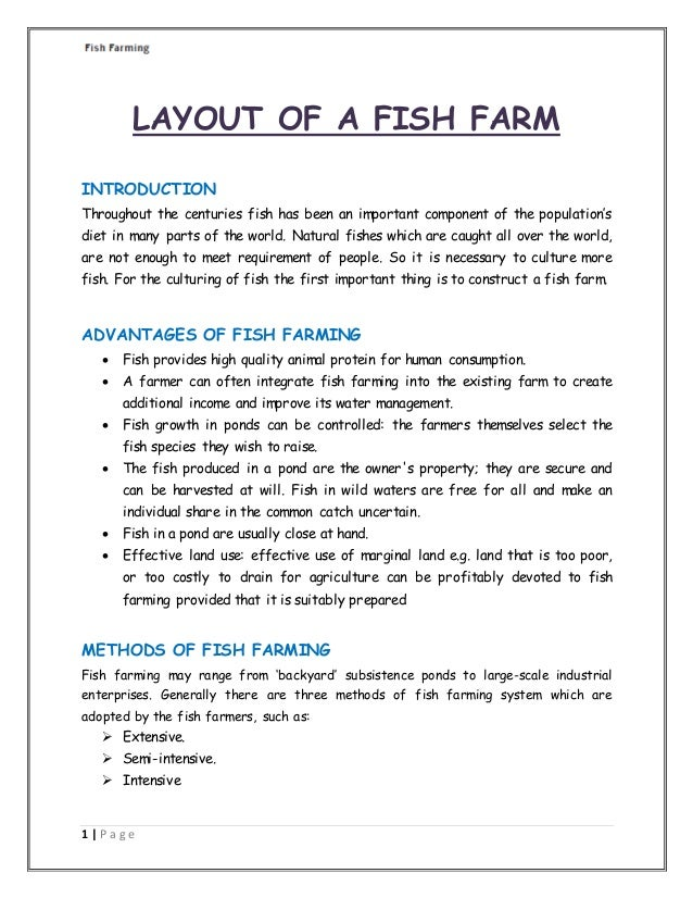 Information About Fish Farming in India & Business Guide