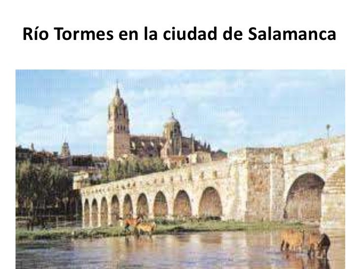 essay on lazarillo de tormes The story lazarillo de tormes revolves around the life of the protagonist, lazarillo de tormes and divides his life in different phases, at each step.