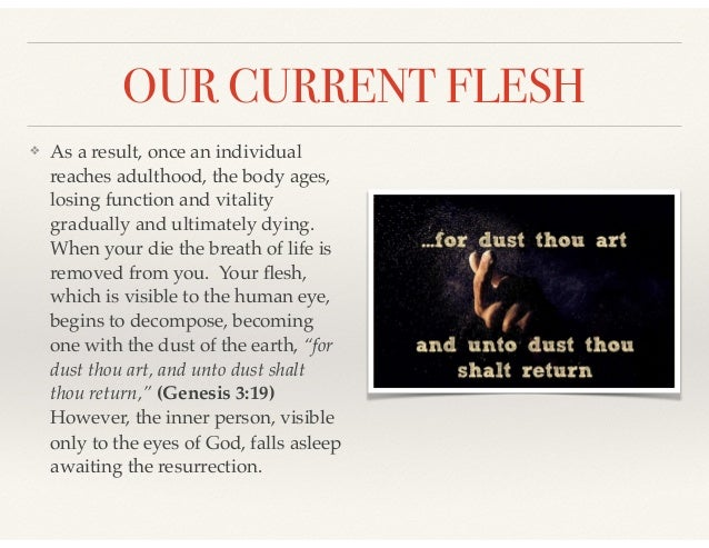 OUR CURRENT FLESH ❖ As a result, once an individual reaches adulthood, the body ages, losing function and vitality gradual...