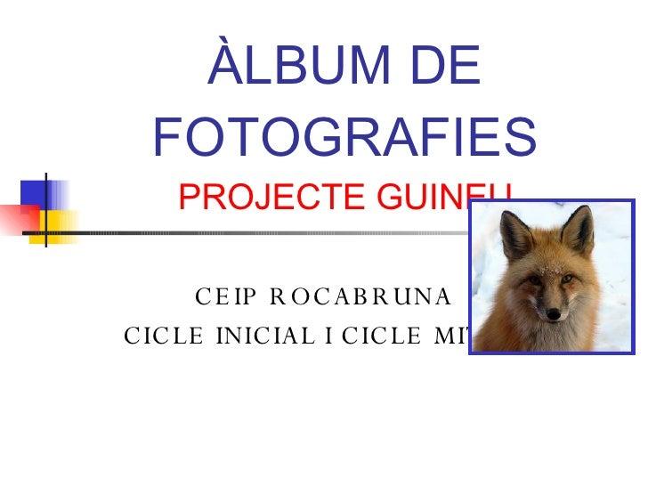 ÀLBUM DE FOTOGRAFIES PROJECTE GUINEU CEIP ROCABRUNA CICLE INICIAL I CICLE MITJÀ