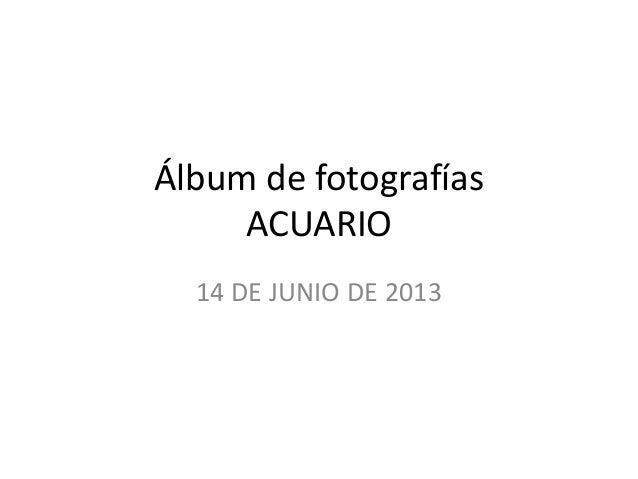 Álbum de fotografías ACUARIO 14 DE JUNIO DE 2013