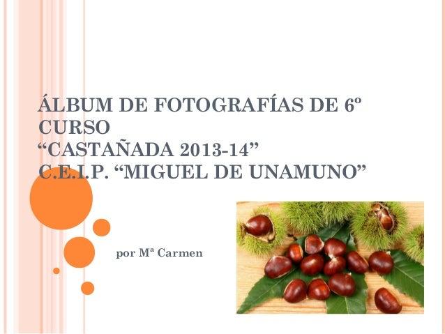 "ÁLBUM DE FOTOGRAFÍAS DE 6º CURSO ""CASTAÑADA 2013-14"" C.E.I.P. ""MIGUEL DE UNAMUNO""  por Mª Carmen"