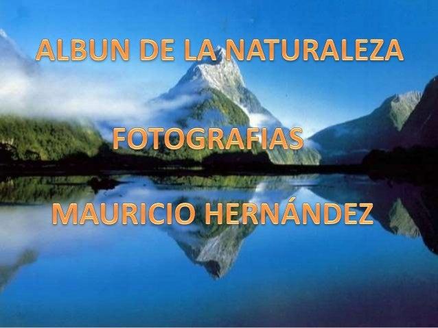 Álbum de fotografías por Eugenia