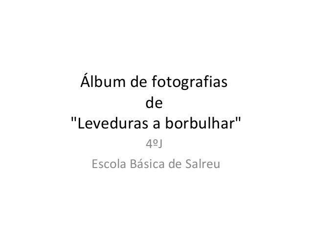 "Álbum de fotografias de ""Leveduras a borbulhar"" 4ºJ Escola Básica de Salreu"