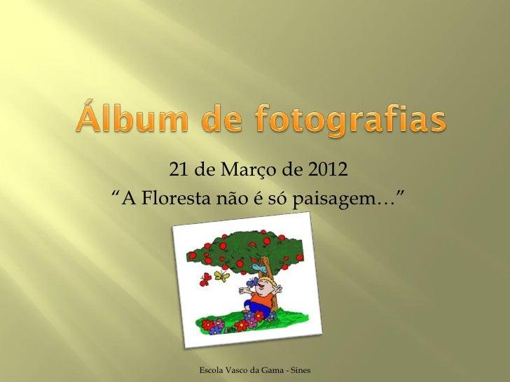 """21 de Março de 2012""""A Floresta não é só paisagem…""""         Escola Vasco da Gama - Sines"""