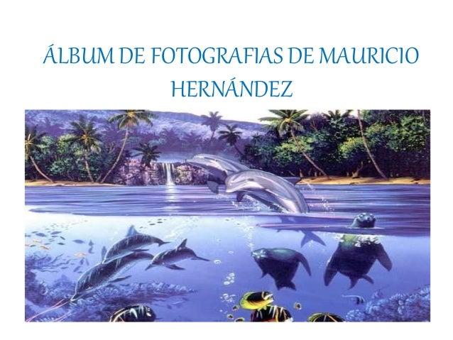 ÁLBUM DE FOTOGRAFIAS DE MAURICIO HERNÁNDEZ por Eugenia