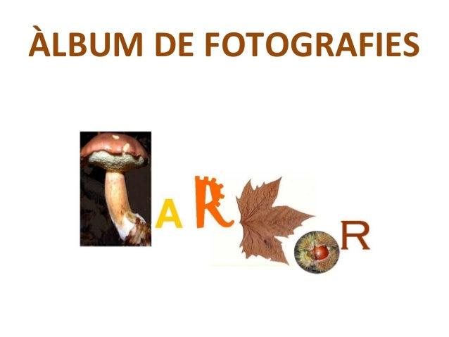 ÀLBUM DE FOTOGRAFIES