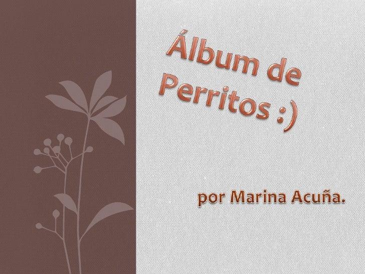 Álbum de Perritos :)<br />por Marina Acuña.<br />