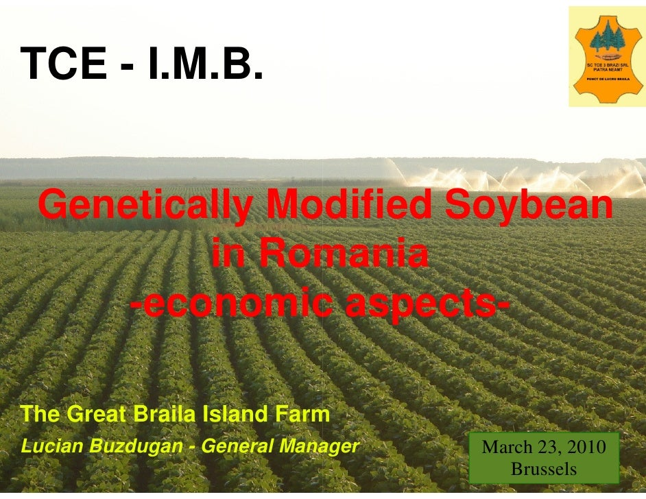 TCE - I.M.B.    Genetically Modified Soybean          in Romania      -economic aspects       economic aspects-  The Great...
