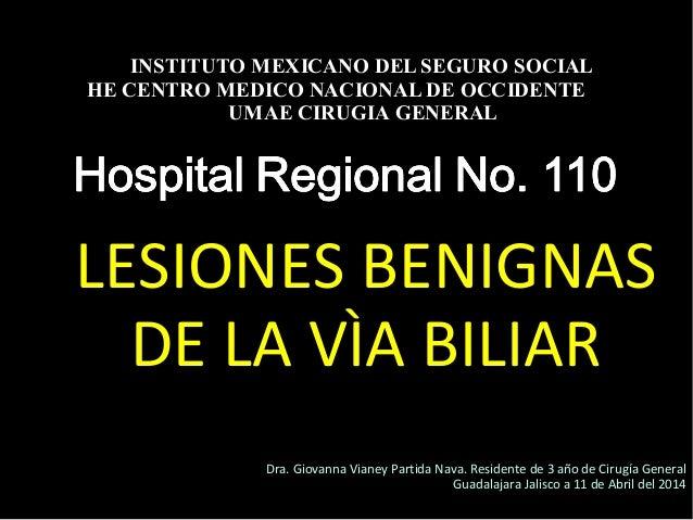 20/01/14 LESIONES BENIGNAS DE LA VÌA BILIAR INSTITUTO MEXICANO DEL SEGURO SOCIAL HE CENTRO MEDICO NACIONAL DE OCCIDENTE UM...