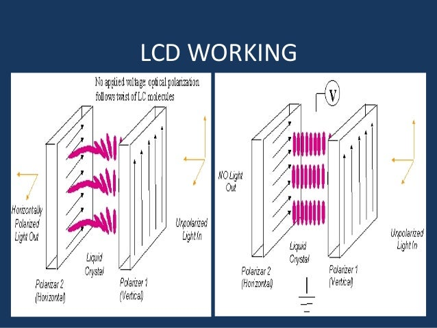 how lcd works diagram wiring diagram rh rs52 lucia umami de how does lcd work diagram