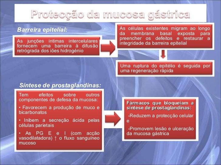 Barreira epitelial: Síntese de prostaglandinas: As junções intimas intercelulares fornecem uma barreira à difusão retrógra...