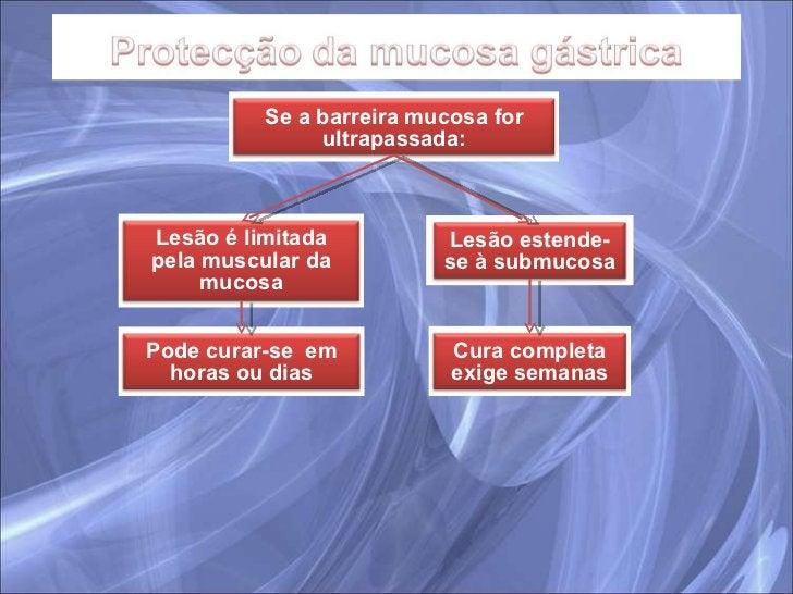 Se a barreira mucosa for ultrapassada: Lesão é limitada pela muscular da mucosa Lesão estende-se à submucosa Pode curar-se...