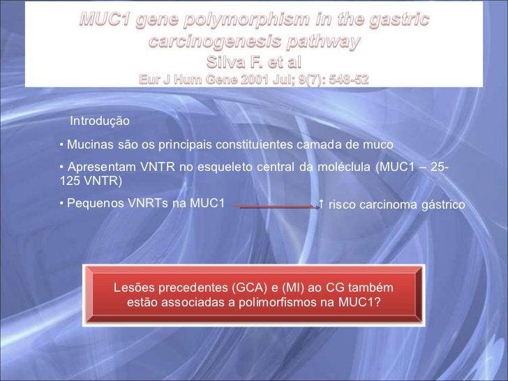 Introdução <ul><li>Mucinas são os principais constituientes camada de muco </li></ul><ul><li>Apresentam VNTR no esqueleto ...