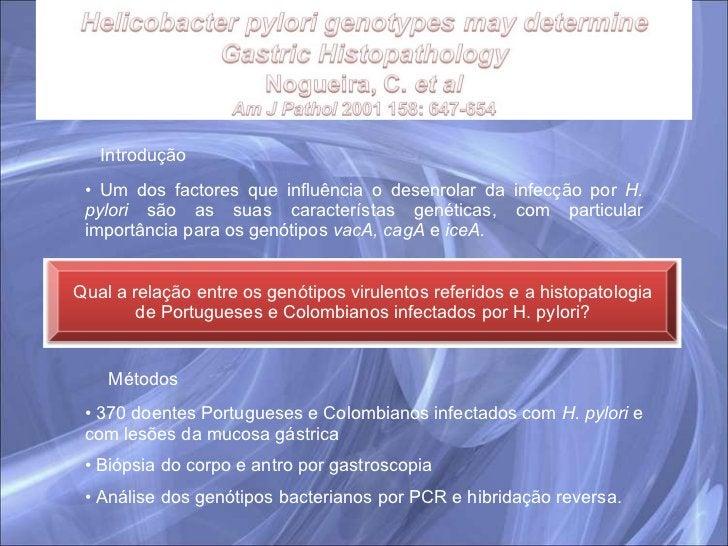 Introdução <ul><li>Um dos factores que influência o desenrolar da infecção por  H. pylori  são as suas característas genét...