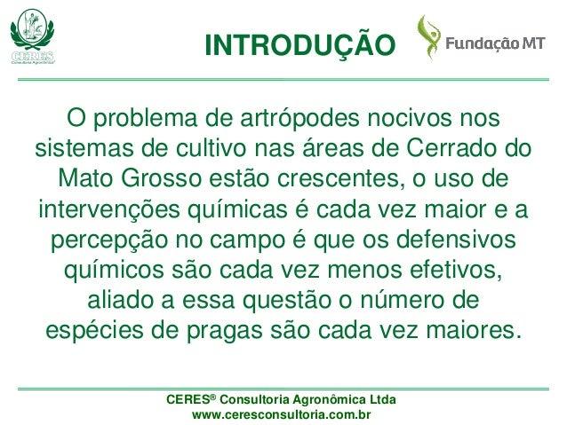 Panorama geral do manejo de artrópodes na região de Cerrado do Mato Grosso Slide 2
