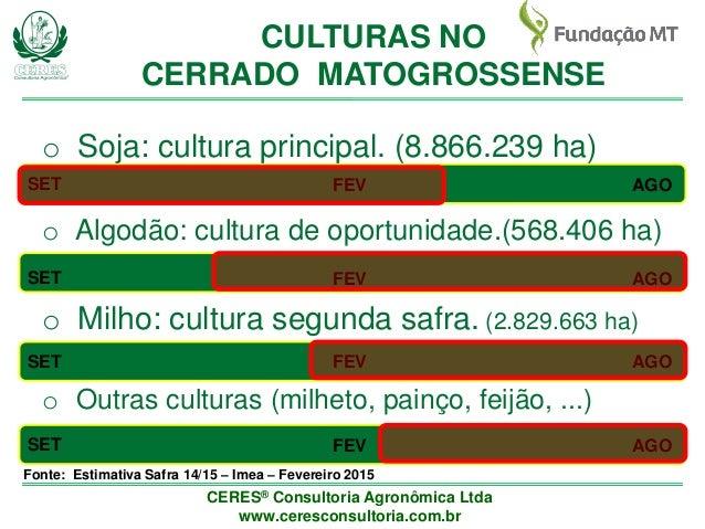 Panorama geral do manejo de artrópodes na região de Cerrado do Mato Grosso Slide 3