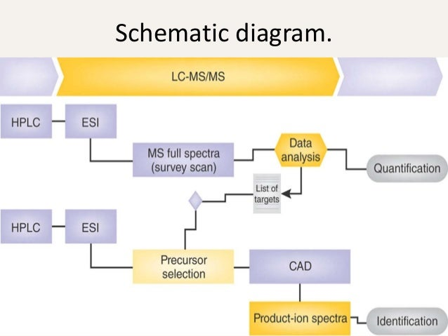 Liquid Chromatography And Mass Spectrometry  Lcms