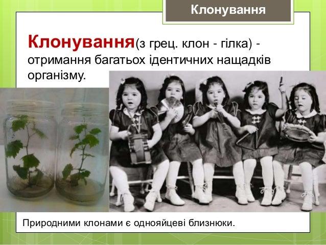 Клонування(з грец. клон - гілка) - отримання багатьох ідентичних нащадків організму. Природними клонами є однояйцеві близн...