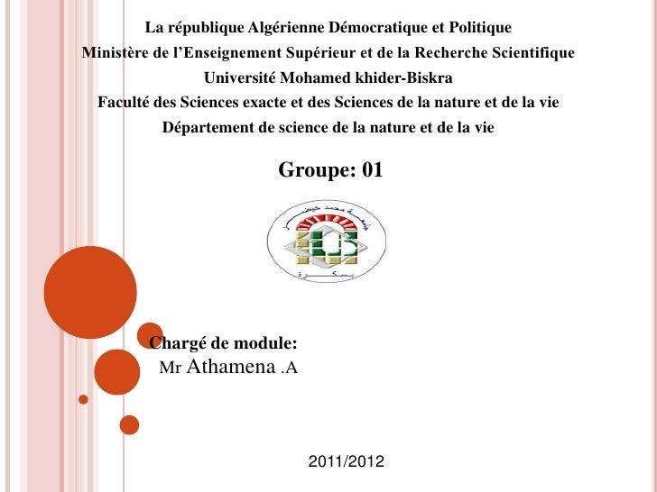 La république Algérienne Démocratique et PolitiqueMinistère de l'Enseignement Supérieur et de la Recherche Scientifique   ...
