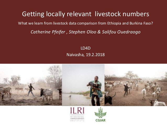 Getting locally relevant livestock numbers What we learn from livestock data comparison from Ethiopia and Burkina Faso? Ca...