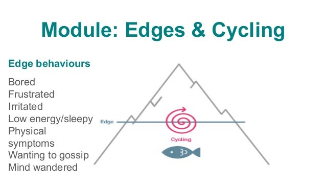 Edge behaviour • Sudden • Occurs when group 'at an edge' • Symptom something from below waterline (in groups' unconscio...