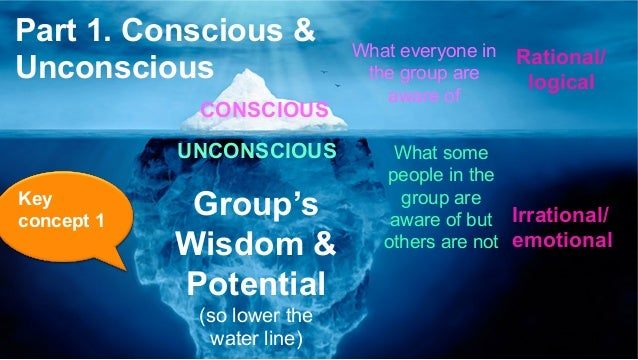 CONSCIOUS UNCONSCIOUS What some people in the group are aware of but others are not What everyone in the group are aware o...