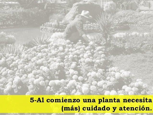 El l der jardinero for Se necesita jardinero