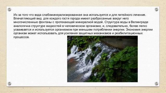 """www.maxivelingrad.com ПАРК ОТЕЛЬ """"МАКСИ"""" * * * * *  В горах  Минеральный бассейн с водными эффектами"""