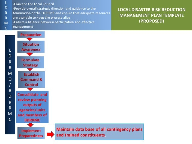 Proposed Local Disaster Risk Reduction Management Planning Process