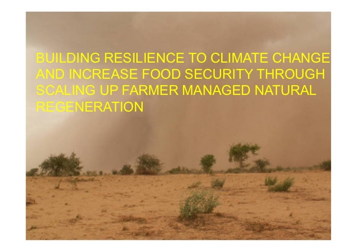 BUILDING RESILIENCE TO CLIMATE CHANGEAND INCREASE FOOD SECURITY THROUGHSCALING UP FARMER MANAGED NATURALREGENERATION