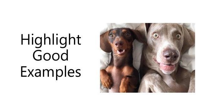 Highlight Good Examples