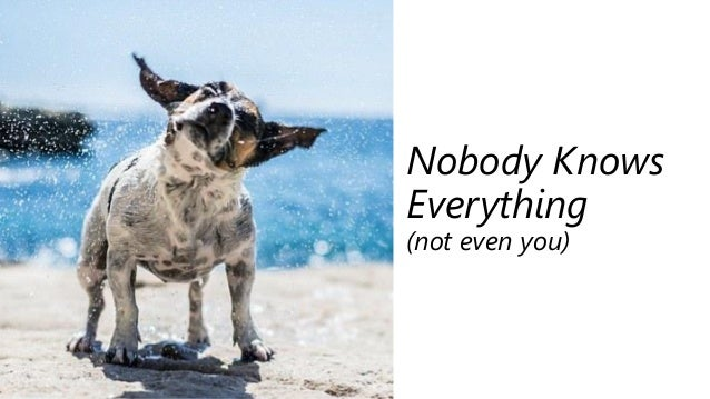 Nobody Knows Everything (not even you)