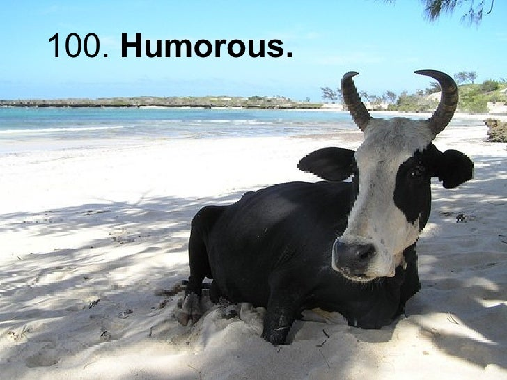 100.  Humorous.