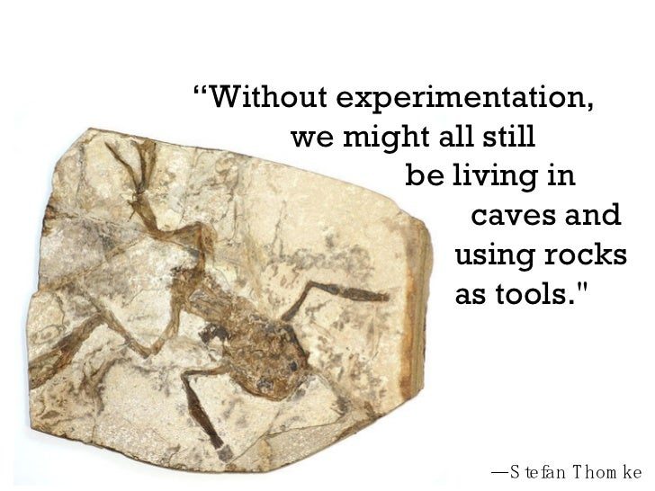 """"""" Without experimentation,  we might all still  be living in  caves and  using rocks  as tools.""""   — Stefan Thomke"""