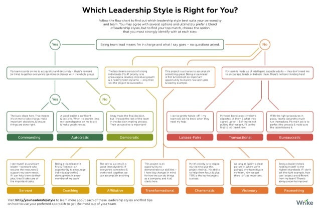 Which Leadership Style is Right for You? (Decision Tree)
