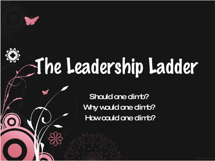 The Leadership Ladder Should one climb?  Why would one climb?  How could one climb?