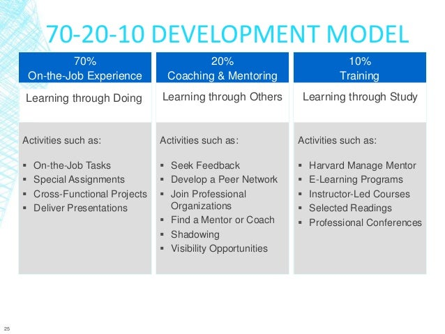 Leadership Development Plan Example Pdf Dolapgnetband