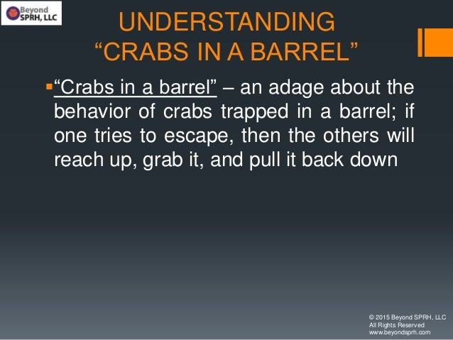 """UNDERSTANDING """"CRABS IN A BARREL"""" """"Crabs in a barrel"""" – an adage about the behavior of crabs trapped in a barrel; if one ..."""