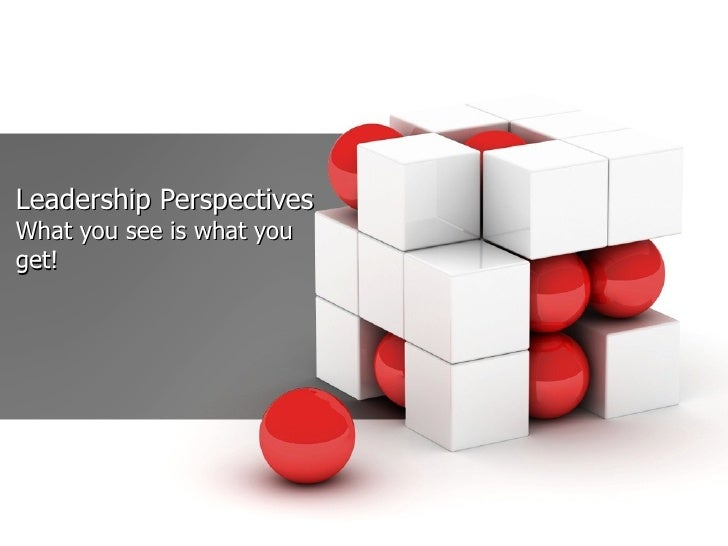Leadership Perspectives What you see is what you get!